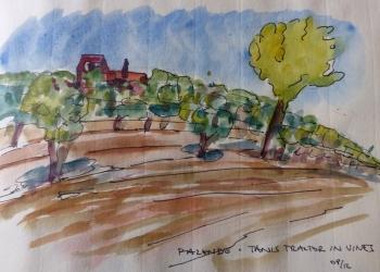tanis-vignes-2012-web