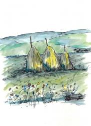 hay-stooks-spain-2008-web