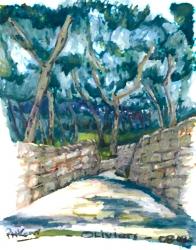 olive-path-paxos-2008-web