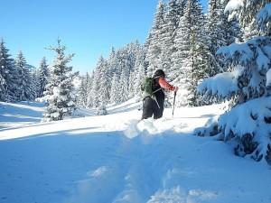 deep snow at 1700m
