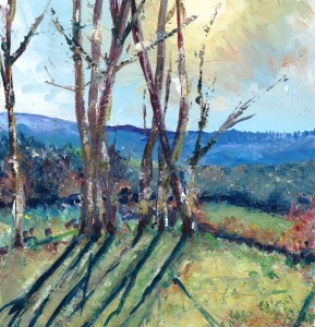 Lherm valley - Copy